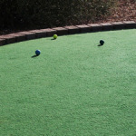 Mini golf green