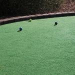 Mini golf green